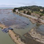 Humboldt Bay Levee Breach Plug
